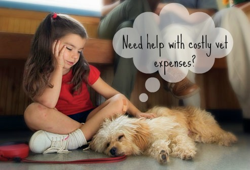 Do you need help affording vet expenses?