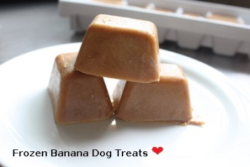 Frozen Banana Dog Treat